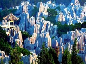 лес Шилинь в Китае